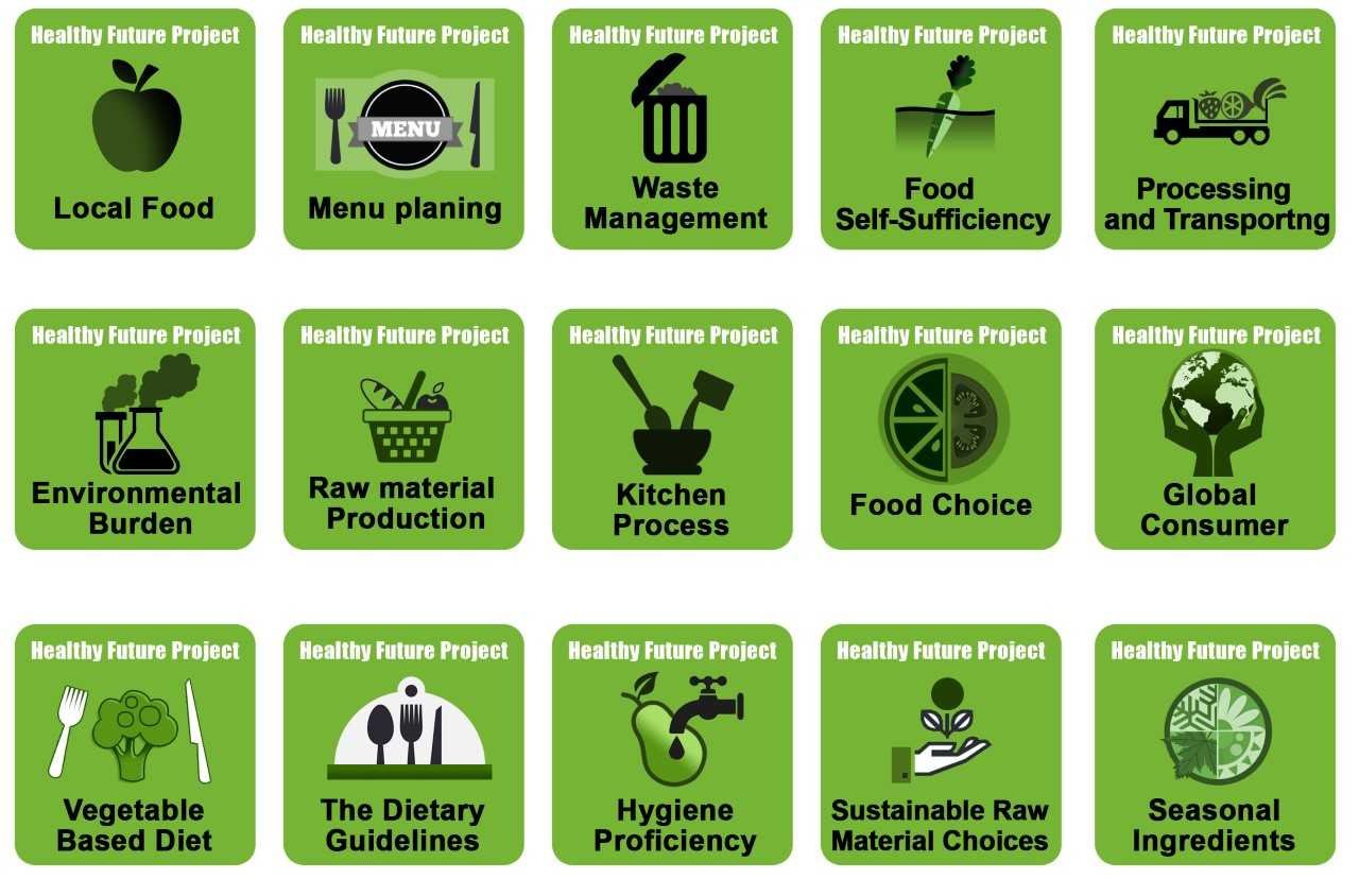 healthy future project  open badges as part of the